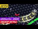 Slitherio Обзор 2020 Слизарио Обзор 2020