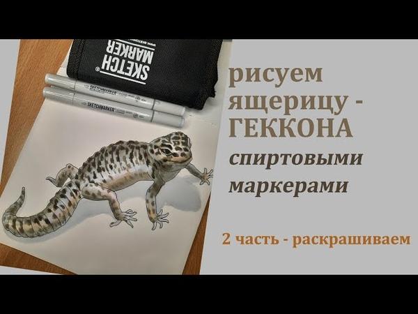 Рисуем геккона, ящерицу, 2 часть раскраска спиртовыми маркерами, набор серых оттенков Sketchmarker