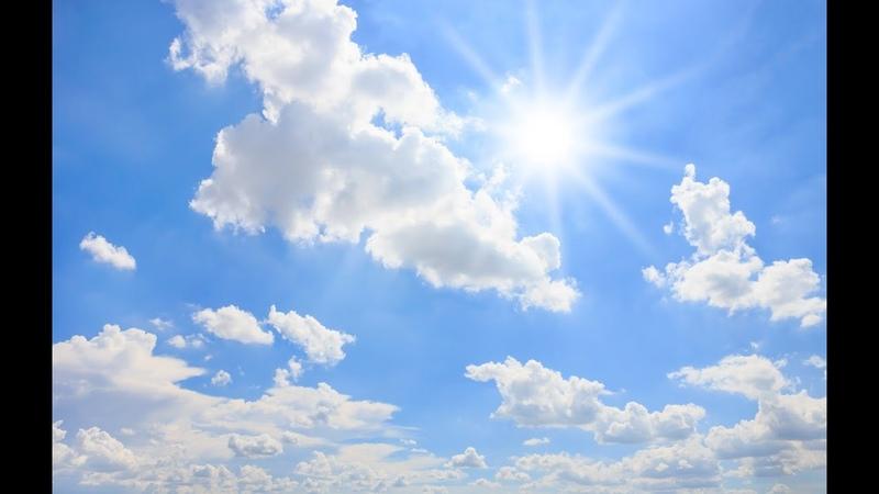 А В Клюев Рождение Нового Вида Жить Божественным Нектаром Как Действует Эволюционная Энергия