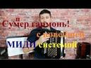 Супер гармонь с новейшей МИДИ системой ОТЧЕТ в Санкт Петербурга