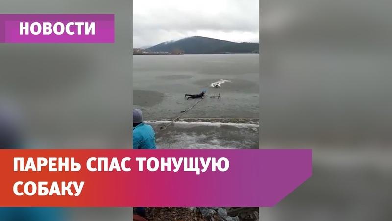 В Белорецке парень рискуя жизнью спас тонущую собаку