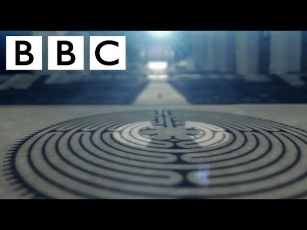 BBC Тайный код жизни Формы