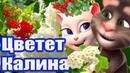 🌺 Цветет Калина 🌺 🌹Так Мило и с Любовью что Просто нет Слов 🌹 🌺 Анжела и Томик 🌺