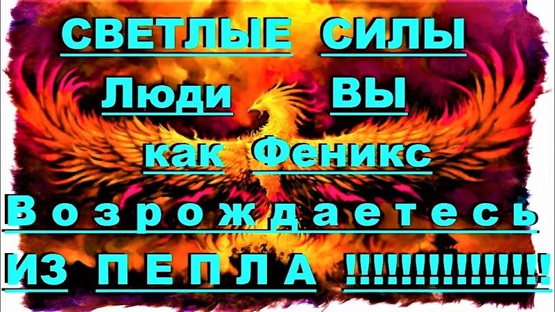 ✔ *АрхиСРОЧНО* «ВЫСШИЕ ~ ВЫ возрождаетесь из пепла !»