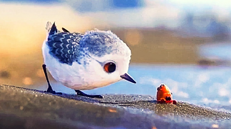 PIPER Disney Pixar Full Short Film Official Promos Finding Dory Bonus 2016 Animation Adventure