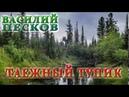 ВАСИЛИЙ ПЕСКОВ. ТАЕЖНЫЙ ТУПИК ГЛАВЫ 09-19