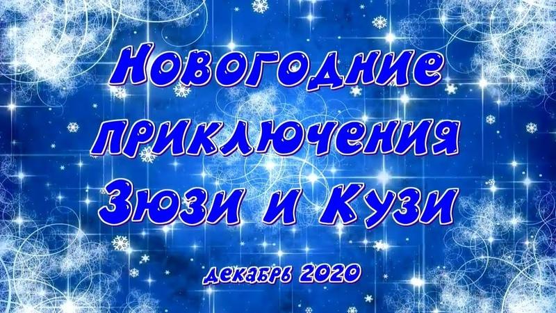 Новогодние приключения Зюзи и Кузи