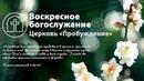 Виктор Моцьо ВЫСШАЯ МЕРА НАКАЗАНИЯ 24.05.2020 Воскресное богослужение