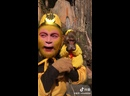 Король обезьян вернулся на малую родину