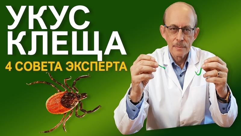 Что делать если Вас укусил клещ последние Европейские рекомендации CDC и IDSA
