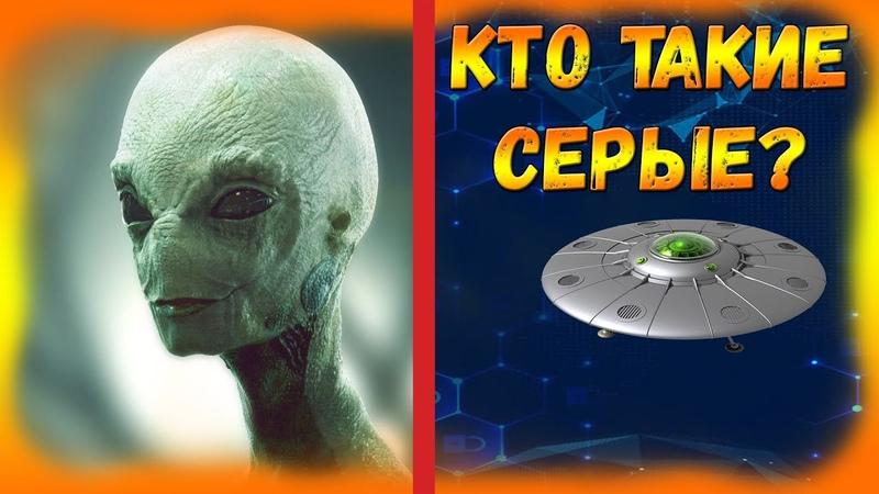 Загадка Серых Инопланетян Доказательства что Пришельцы из Космоса Посещали Землю в Прошлом